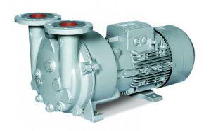 Жидкостно-кольцевой вакуумный компрессор Elmo Rietschle 2BV5